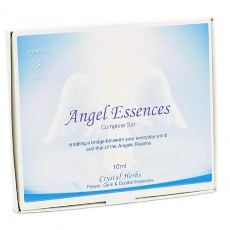 Angel_Essences_SET_of_20_bottles